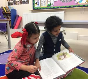 Pair reading