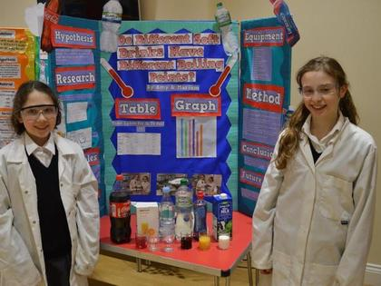 Science Fair - Year 7 - March 2019